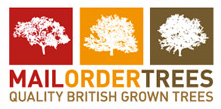 mailordertrees.co.uk