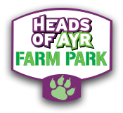 headsofayrfarmpark.co.uk